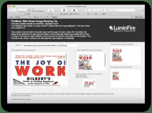 FileMaker Web Viewer Dynamic Image Resizing