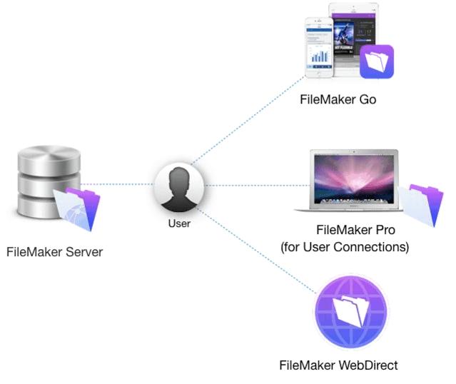 FLT Licensing Model