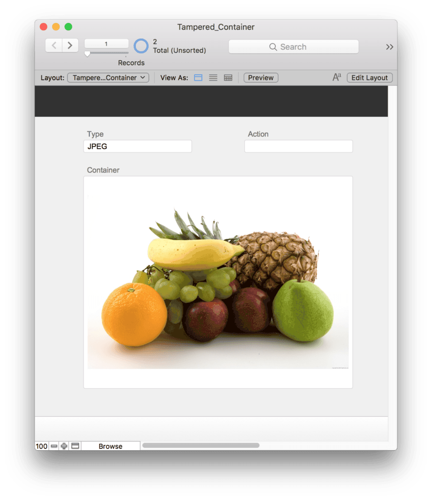 Dealing with Tampered Containers in FileMaker Pro 1