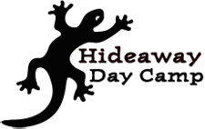 Hideaway Day Camp Streamlines Registration Process with BrilliantSync WordPress to FileMaker Connection
